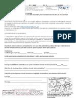 GUIA PESCC MATEMATICAS 2.docx