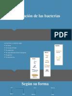 Clasificación de las bacterias-1