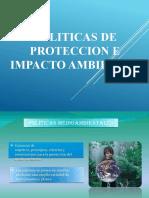 POLITICAS DE PROTECCION E IMPACTO AMBIENTAL