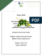 TEAM_Caso Diagnostico Organizacional