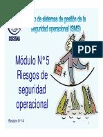 SMS-M-5-Riesgos