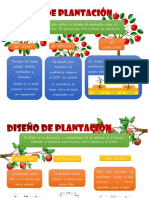 Sistema de plantación