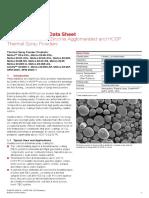 Metco 204F DSMTS-0001.5_8YO_ZrO_HOSP.pdf