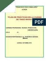 PLAN DE PRACTICA A LA CIUDAD DE TINGO MARIA.docx