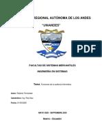 Fernandez_Auditoria Informatica