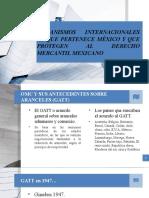 MECANISMOS INTERNACIONALES AL QUE PERTENECE MÉXICO