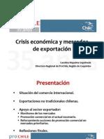 Crisis y Expo No Tradicionales