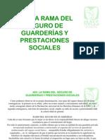 9.- Rama Del Seguro de Guarderias y Prestaciones Sociales
