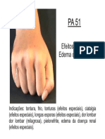 PA51.pdf