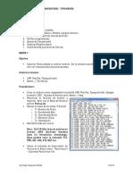 Guía de Practicas de Laboratorio 1 (1).pdf