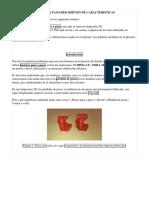 05 MOTORES A PASO DESCRIPCION DE CARACTERISTICAS