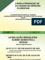 Apresentação Florestais Embrapa 30 06 2015 (2)