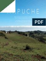 MAPUCHE SERIE INTRODUCCIÓN HISTÓRICA Y RELATOS DE LOS PUEBLOS ORIGINARIOS DE CHILE HISTORICAL OVERVIEW AND