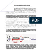 Archivo explicativo.docx