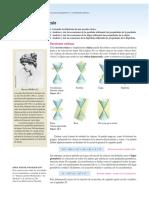 0. Secciones Cónicas (1).pdf