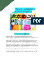 microbiolo