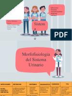 Exposicion Sistema Urinario Patologia 2020-1.pptx