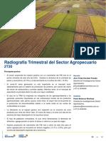 Radiografía Trimestral del Sector Agropecuario 2T20_Completo