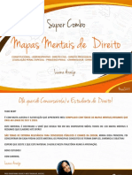 Mapas Mentais de Penal - Luana Araujo - 2018
