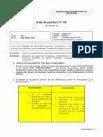 Guía de Trabajo N° 08 (2)