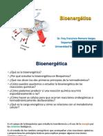 Bioenergetica LBBM