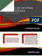 PRUEBAS DE HIPÓTESIS CHI CUADRADA(1).pdf
