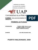 trabajo eval impact amb PUERTO MALDONADO