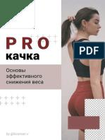 PROкачка.pdf