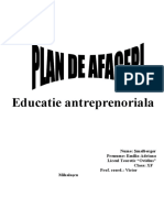 Plan de Afaceri - Gradinita Privata