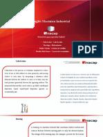 Unidad I Lubricacion Rodamientos cadenas de rodillos y Correas de transmision (1)