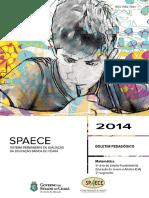 CE-SPAECE-2014-RP-MT-9EF-WEB.pdf