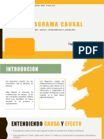 DIAGRAMA CAUSAL.pptx