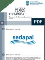 TEORÍA DE LA REGULACIÓN ECONÓMICA - REGULACIÓN DEL MONOPOLIO NATURAL MONOPRODUCTOR (1)