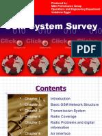 GSM System Survey