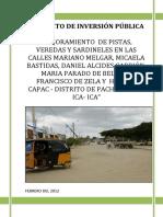PROYECTO DE INVERSION PUBLICA -  ICA