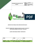 3.PROCEDIMIENTO DE INSPECCIÓN POR HOLIDAY.docx