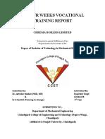 VOCATIONAL TRAINING REPORT.docx