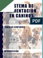 SISTEMA DE ALIMENTACIÓN EN CANINOS
