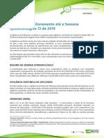 Informe--Influenza-n13.pdf