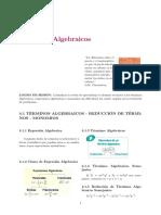 NMI SEM5-1 TERMINO ALGEBRAICO Copy