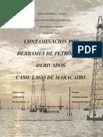 Impacto Ambiental por Derrame de Petroleo