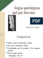 Patología quirúrgica del pie bovino
