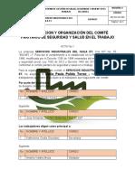 CONSTITUCION Y ORGANIZACIÓN DEL COMITÉ PARITARIO DE SEGURIDAD Y SALUD EN EL TRABAJO