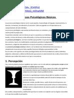 Procesos Psicologicos basicos.docx