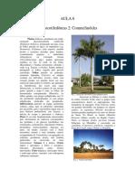 aula_6[144].pdf