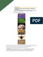 Biología wiki