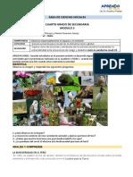MÓDULO III - CCSS.pdf