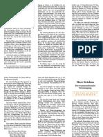 flyer-transzendentale-schwingung.pdf
