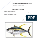 Energy sources for fish and calculating enrgy digestibility