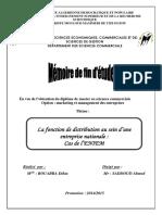 memoire distribution.pdf